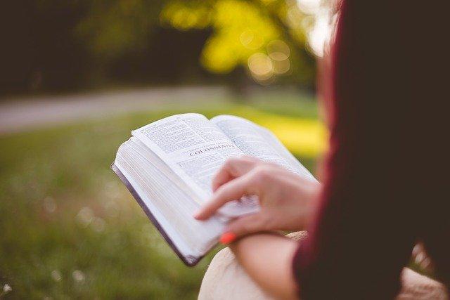 ¿Cuántos versículos tiene cada uno de los libros de la Biblia? 1