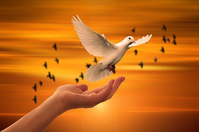 Versículos de Fortaleza Espiritual 1