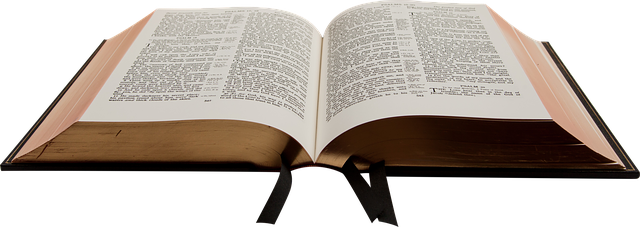 La Santa Biblia Descargable 1